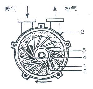 2BV水环式真空泵的工作原理